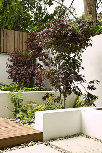 This hillside designed by Stephen Charlip Architect uses retaining walls to create a much needed backyard garden space. Maple trees, wood decks and ferns provide a retreat from the busy front area of the house.